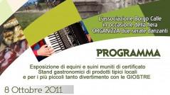 Locandina Fiera Tradizionale di Calle Associazione Borgo Calle - Tricarico