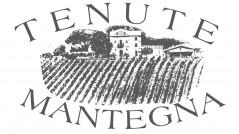 Studio del logo per Tenute Mantegna