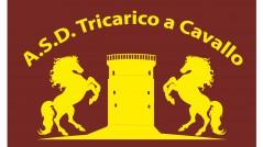 Studio del logo per Associazione Tricarico a Cavallo